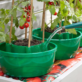 Hercul-Easy Plant Watering System (set of 3)