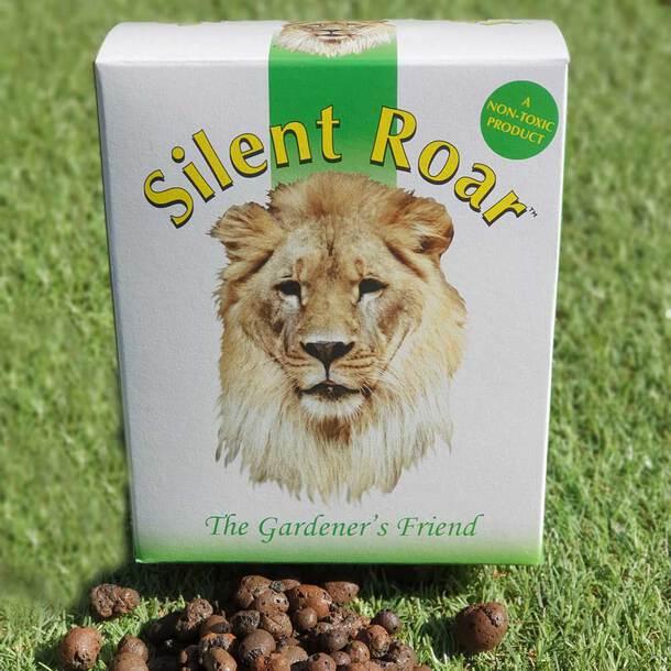Silent Roar
