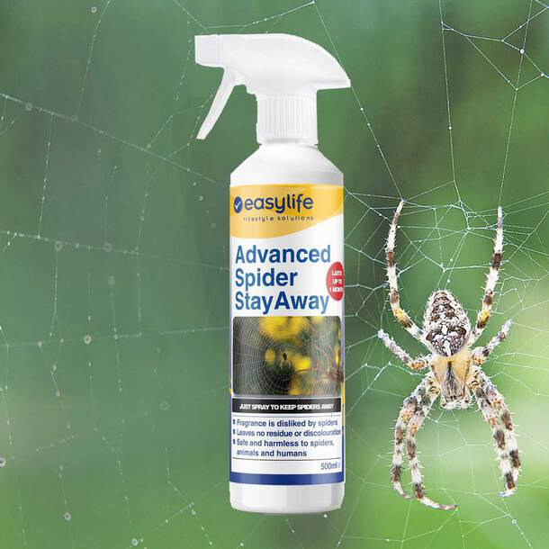 Spider Stayaway (Pack of 3)